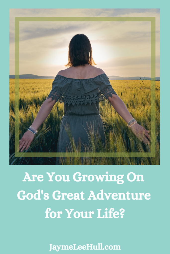 Are you growing on God's Great Adventure for your life? Only by the grace of God and my mentor am I able to find my purpose and direction.